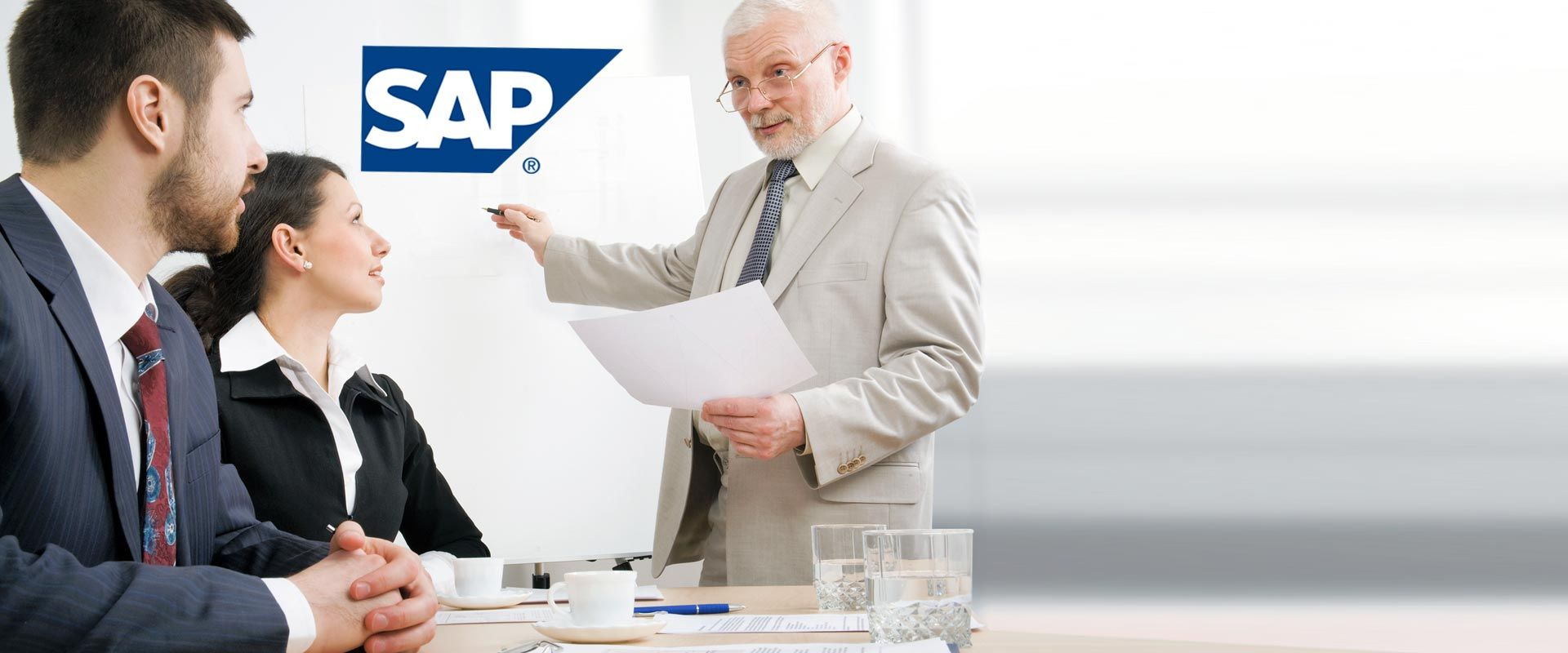 SAP SEM Consulting Company in Houston | Austin | Dallas | San Antonio | Atlanta