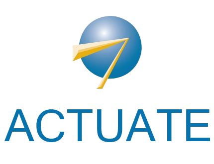 ACTUATE REPORT CONSULTING AND DEVELOPMENT SERVICES