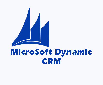 DYNAMIC CRM CONSULTING